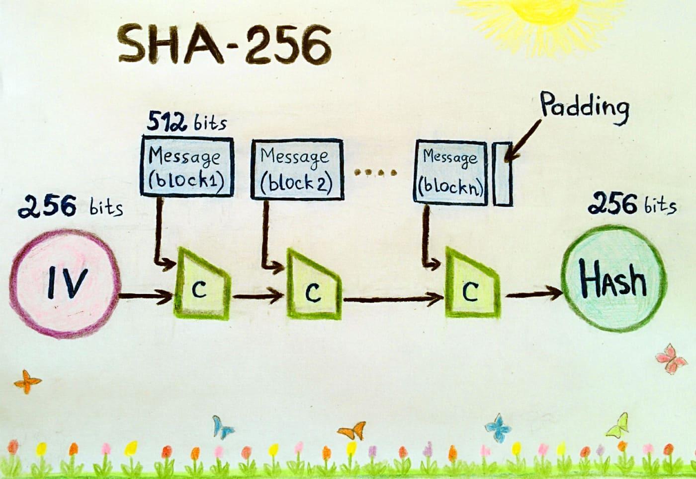 Алгоритм майнинга SHA-256. Как это работает?