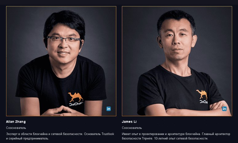 DX Chain Team