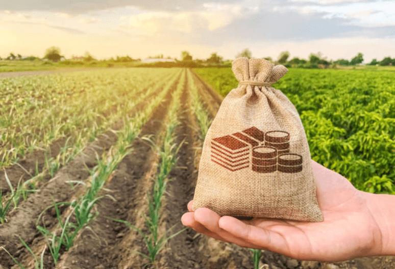 Yield Farming Перспективы