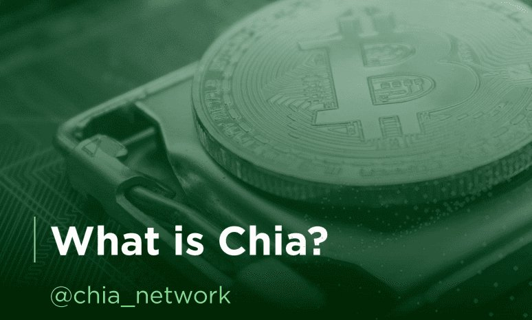 What is Chia?